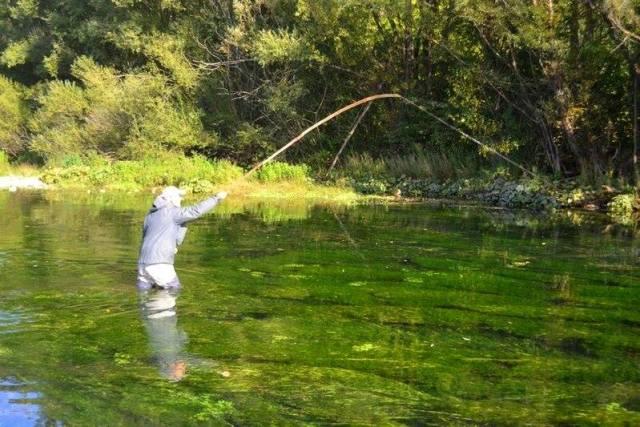 Ljeskovi štap za pecanje – odolijeva modernoj tehnici