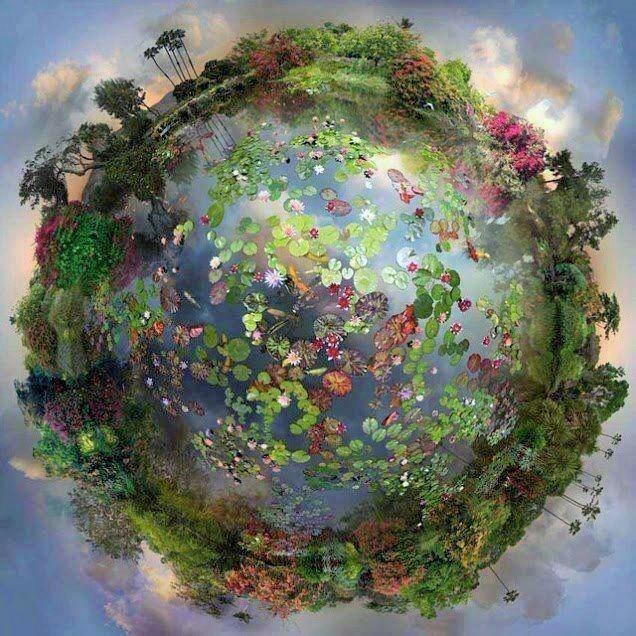 Dan zaštite biodiverziteta