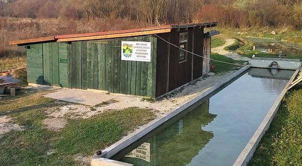 Mini centar za revitalizaciju autohtonih salmonidnih vrsta riba