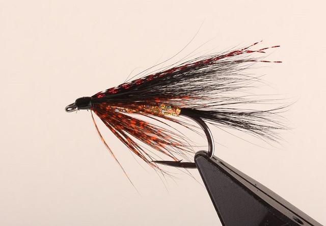 Pastrmska muha za severne vode