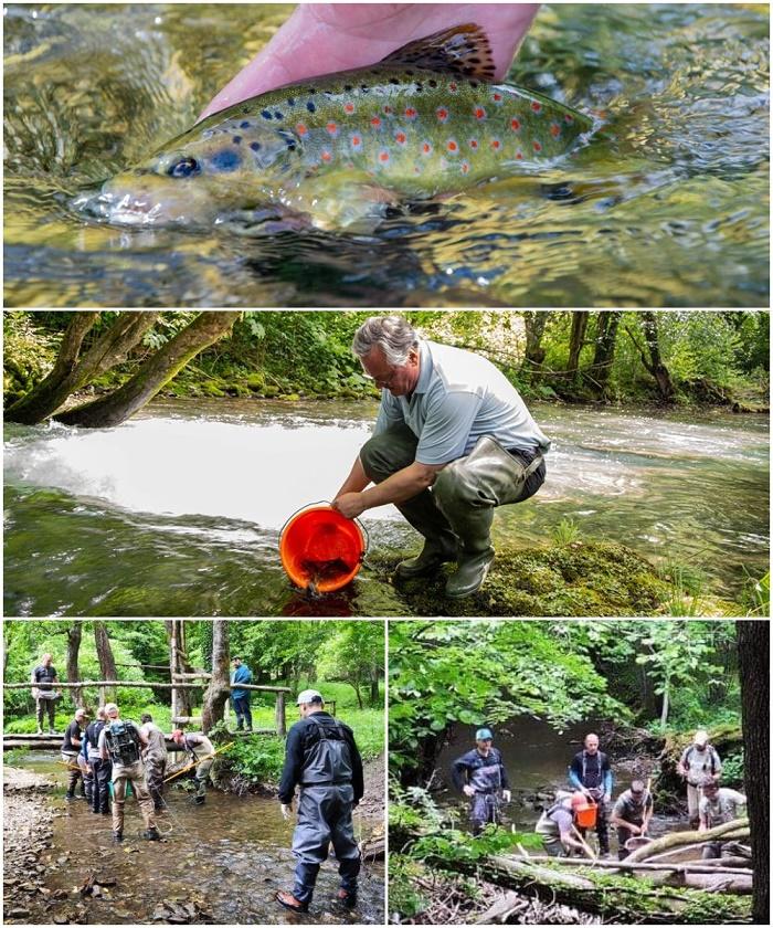 Radna akcija, izlovljavanje, poribljavanje i čišćenje vodotoka