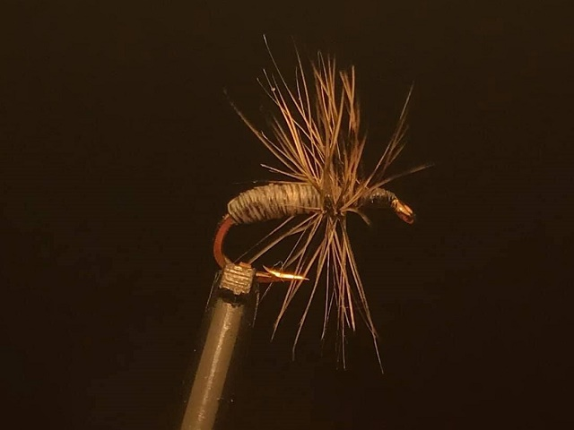 Banova lipljanska mušica