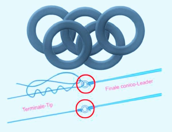 Prsten za predveze (Stonfo Joint Rings)