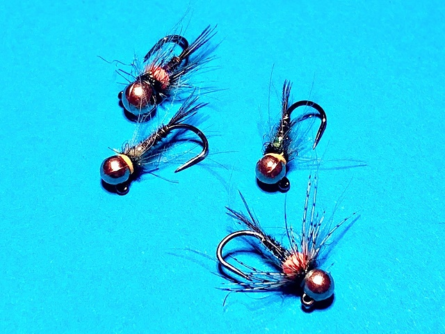 Varijacije nimfe fazanov rep