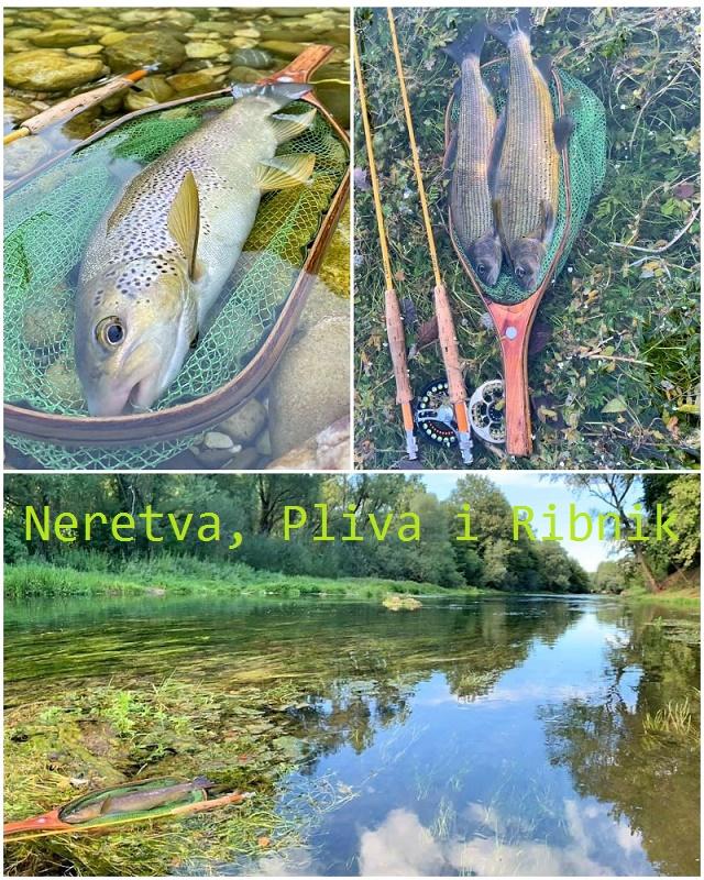 Mušičarska avantura na Neretvi, Plivi i Ribniku